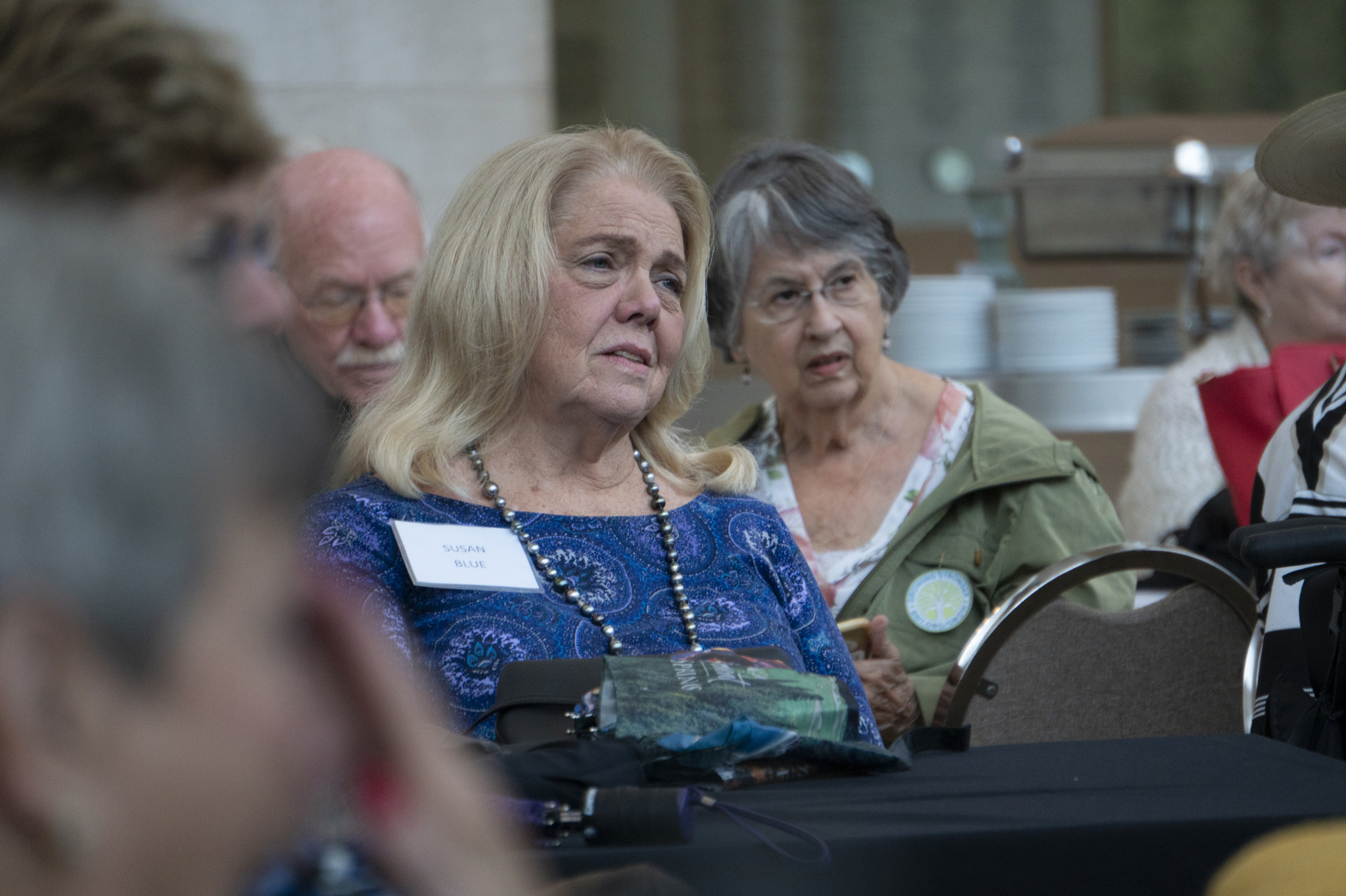 Susan Blue, Ann Southard Lamb